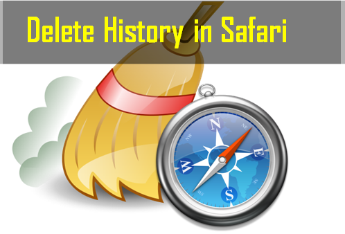 Delete history in safari